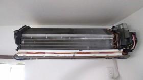 P20101MIC